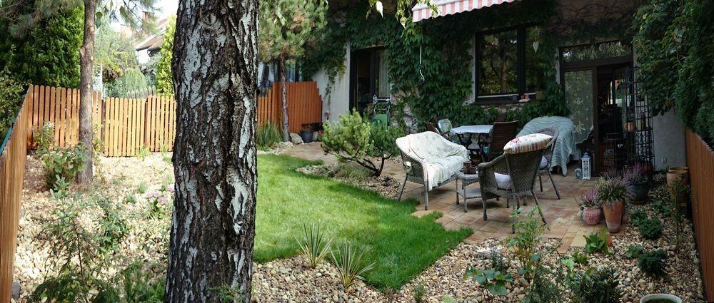 ... Garden Around The Terrace   Small Urban Back Graden